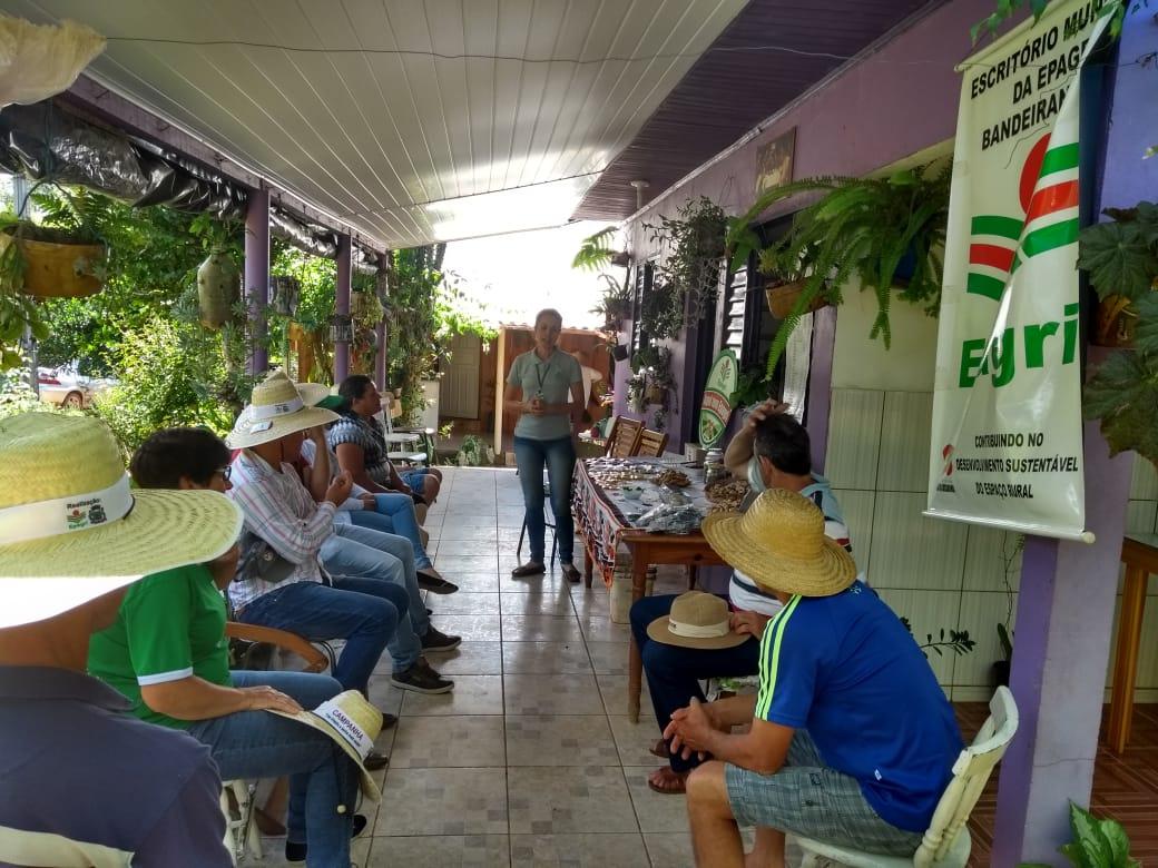 Evento fala sobre a produção de leite a base de pasto perene