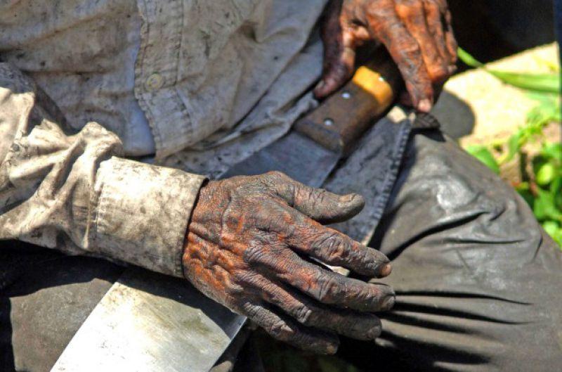 Estado catarinense tem seis empresas na lista de trabalho escravo