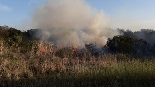 Em um só dia, Bombeiros de Campo Erê atendem quatro incêndios em vegetação