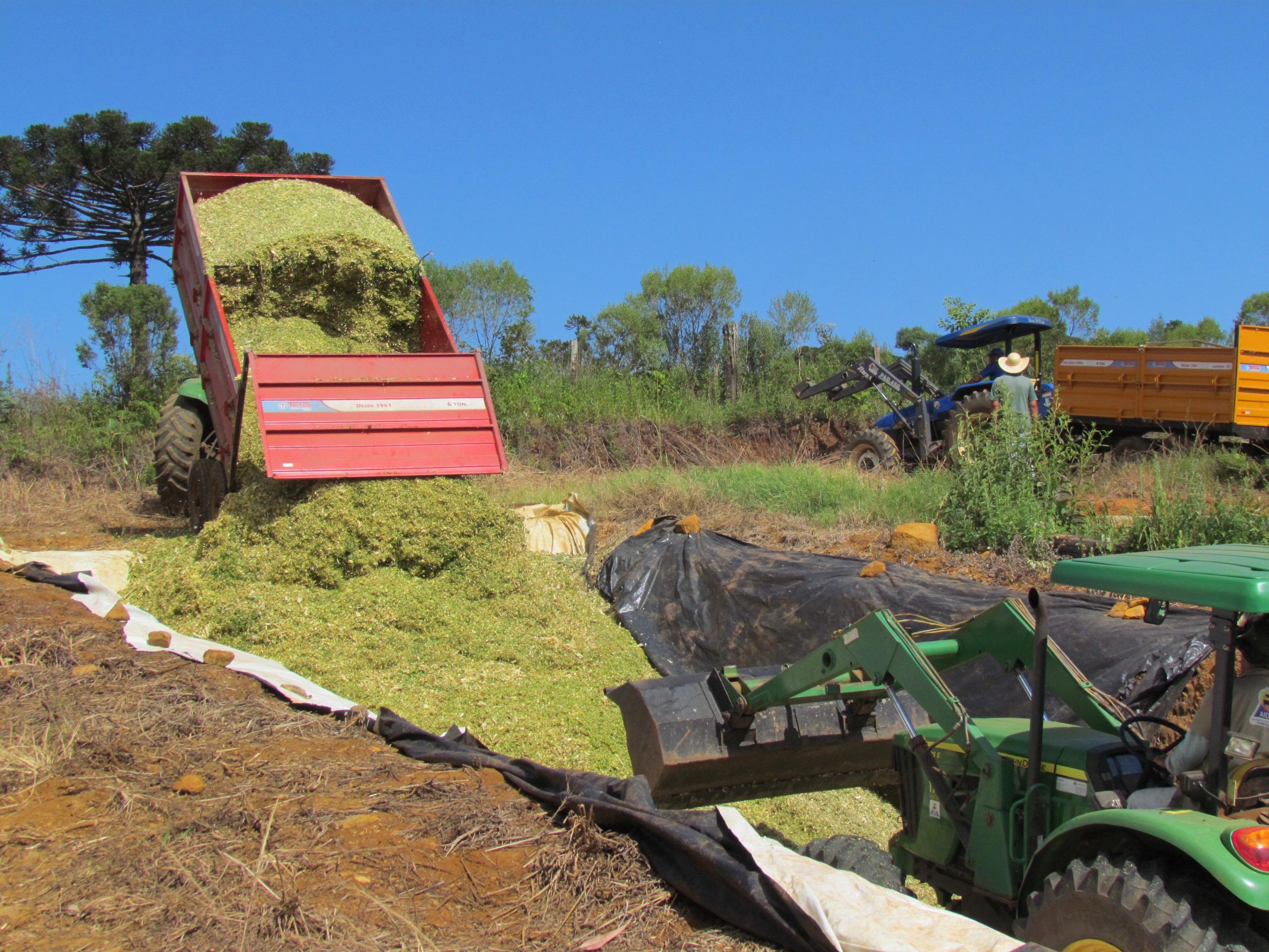 Agricultura de Paraíso realiza trabalho de silagem em propriedades rurais
