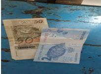 Polícia flagra venda de drogas via aplicativo WhatsApp e prende duas pessoas por tráfico em Descanso