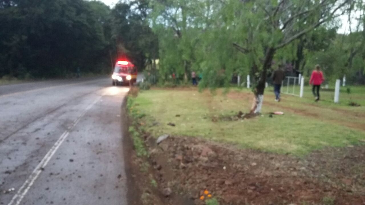 Motorista fica ferido em saída de pista e choque em árvore na SC 163
