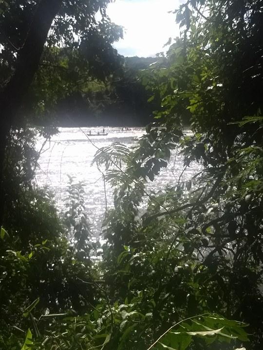 Bombeiros fazem buscas a pescador que desapareceu em Saudades