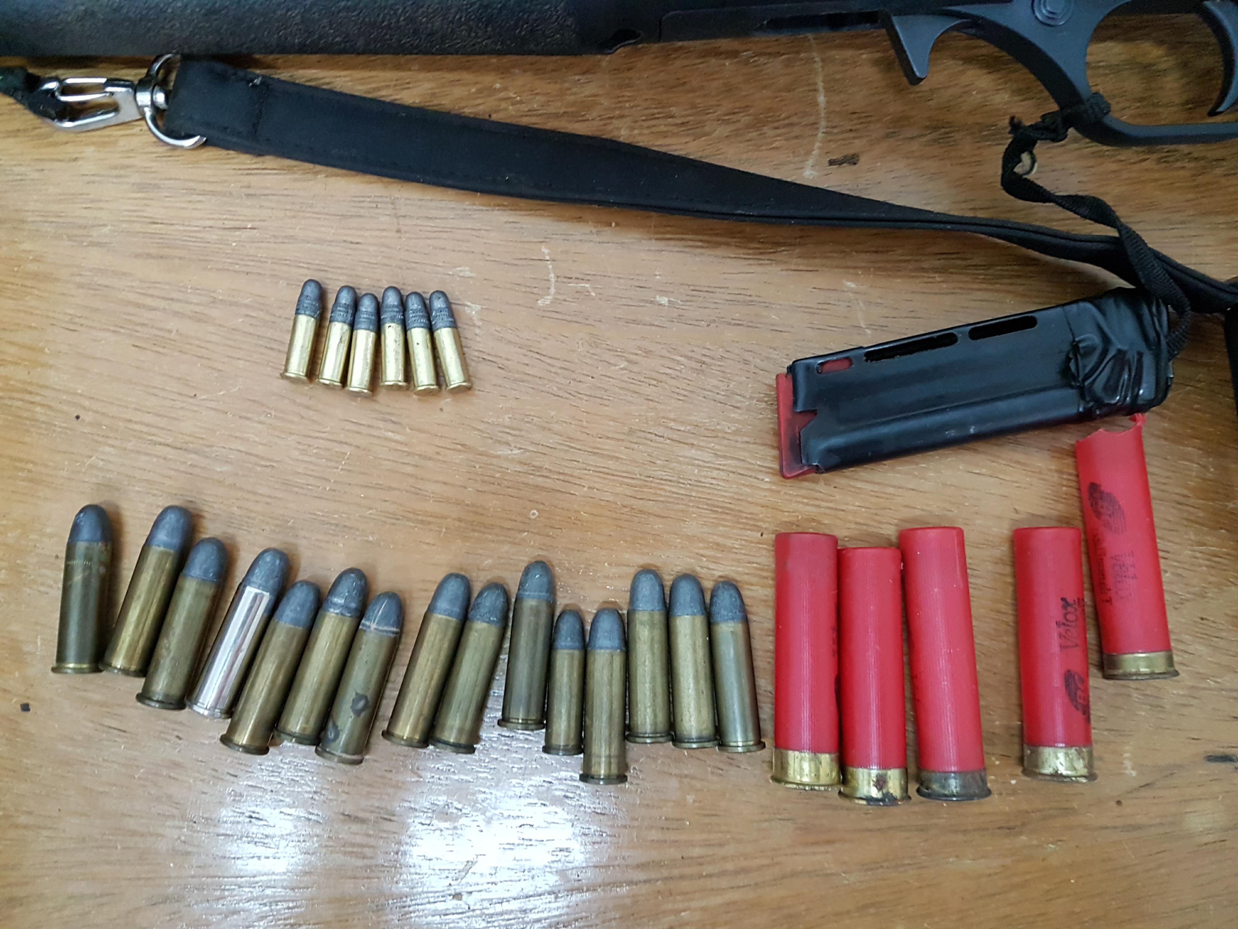 Polícia cumpre mandado de busca e apreensão de armas e munições em Riqueza