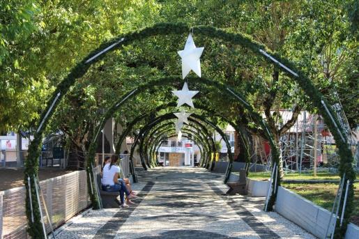 Mondaí define data para o Festival dos Pinheiros e acendimento das luzes de Natal