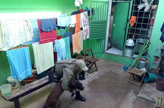 Polícia Militar realiza buscas na Unidade Prisional Avançada de São Miguel do Oeste