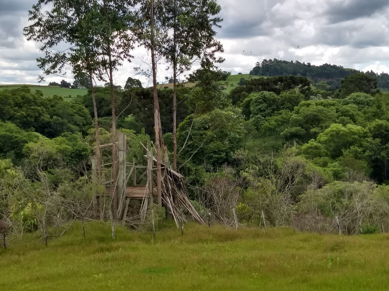 Proprietários de área onde ocorriam estudos ambientais denunciam invasão