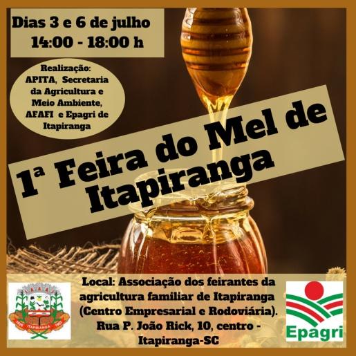 Apicultores de Itapiranga preparam a primeira feira do mel