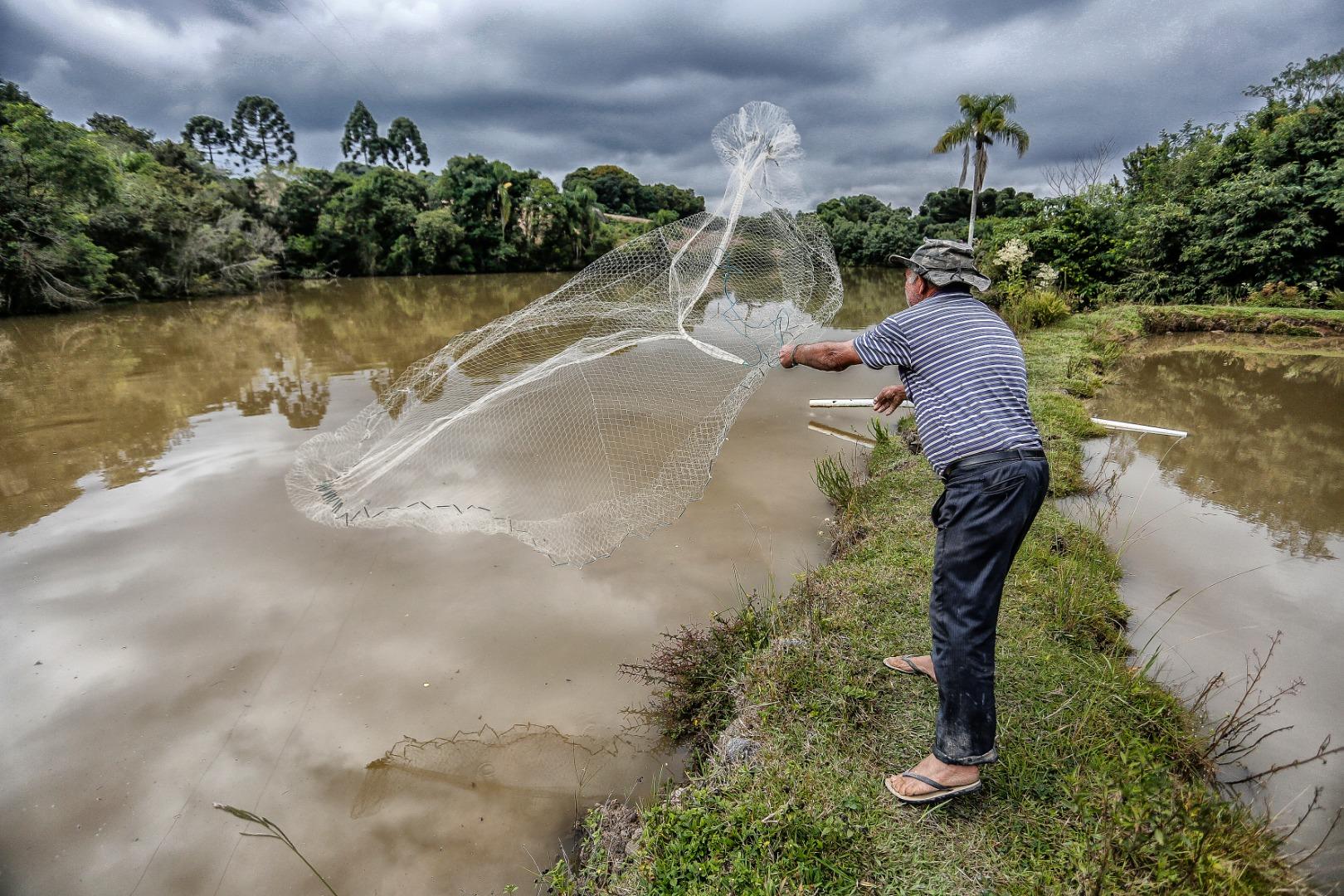 Ouça a enquete da Peperi com piscicultores da região