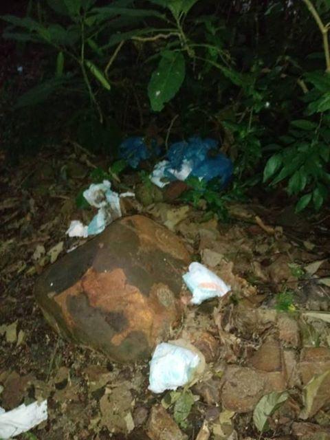 Internauta denuncia descarte irregular de lixo na BR-282