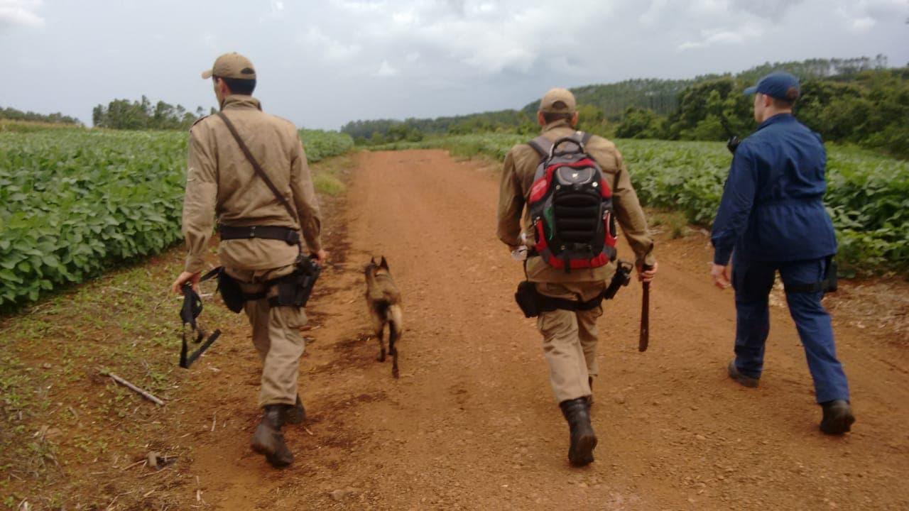 Canil da PM auxilia bombeiros na busca por agricultor desaparecido em Iporã do Oeste