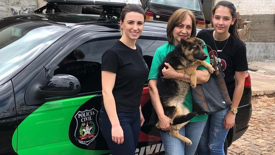 Polícia Civil de Descanso resgata animal vítima de maus-tratos.