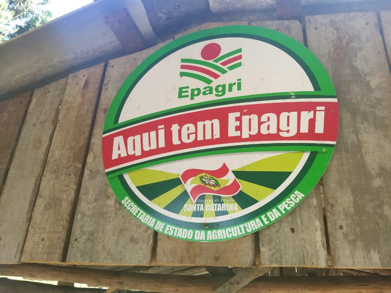 Diversificação na produção garante renda e futuro em propriedade rural familiar