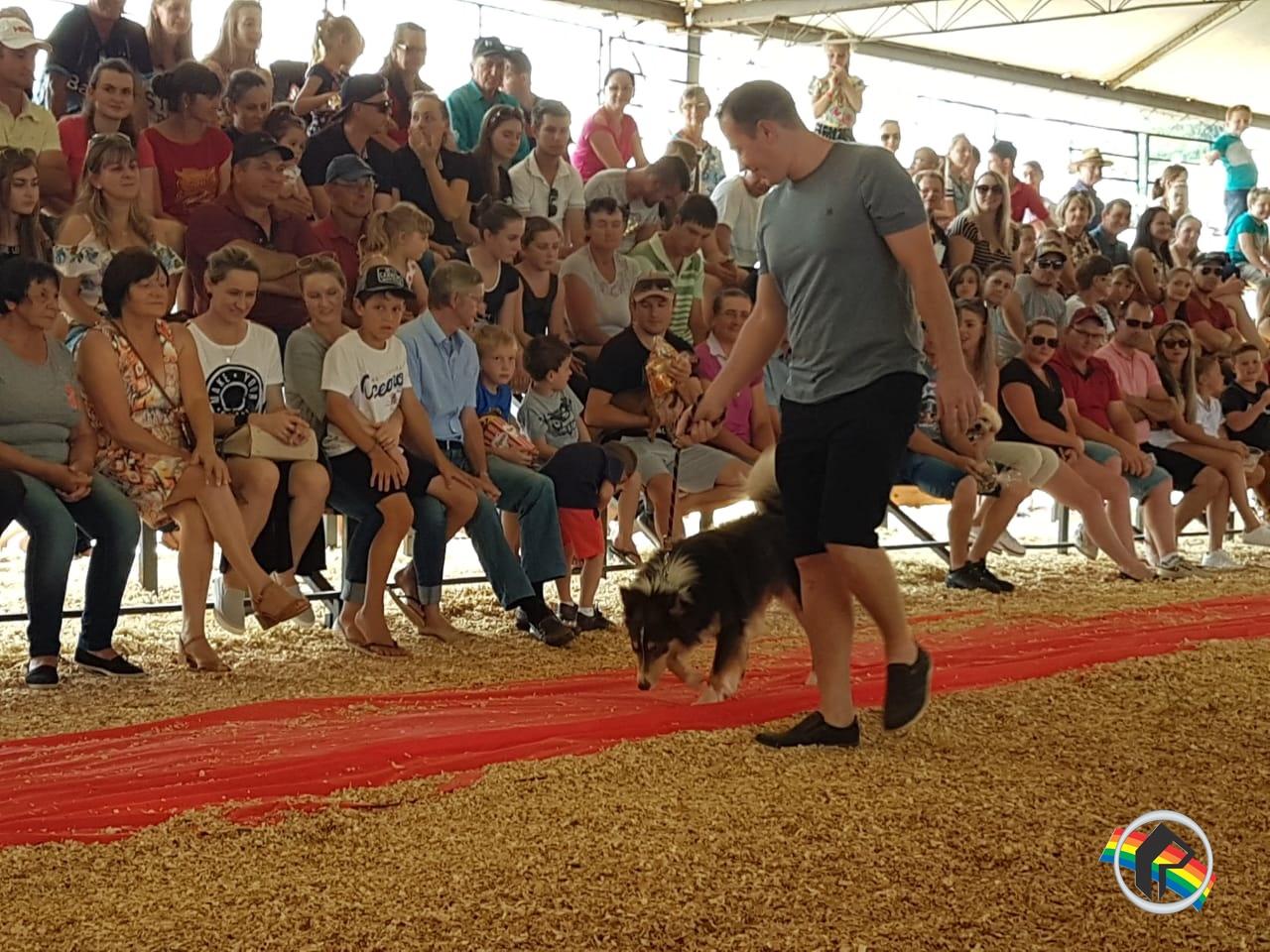 Hundetreffen é sucesso na 4ª  Expo São João