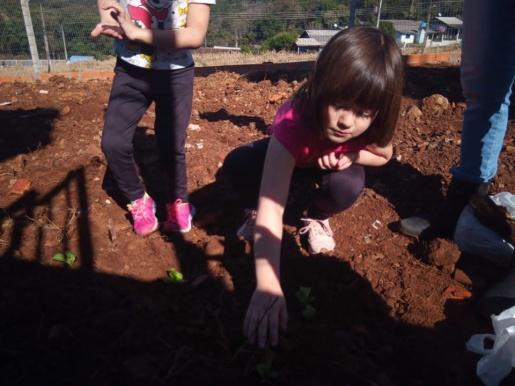 Creche Pró Infância constrói projeto coletivo de enriquecimento do espaço