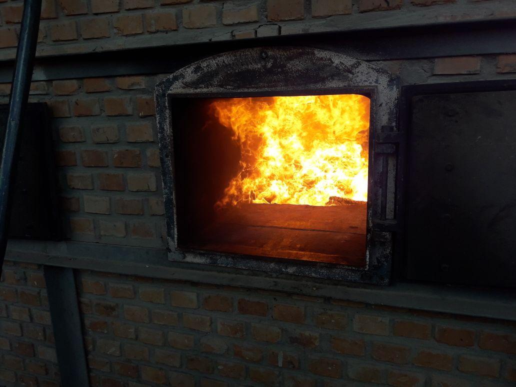 Cocaína apreendida e avaliada em R$ 2 milhões é incinerada