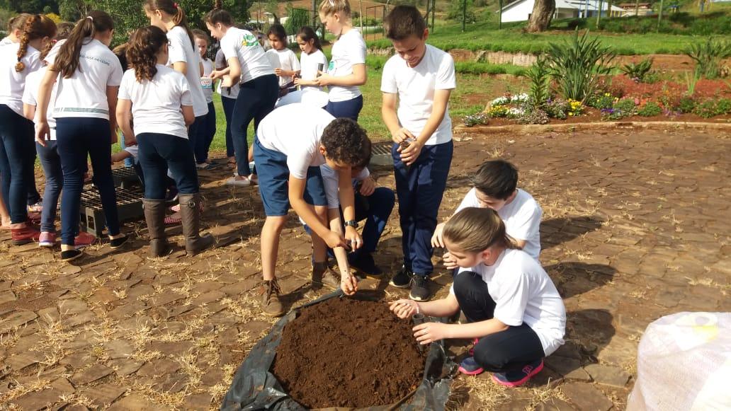 Alunos de Mariflor comemoram dia da árvore com plantio