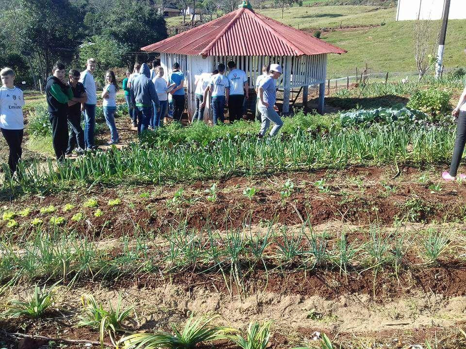 Projeto agroecológico está em fase de conclusão