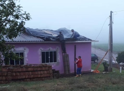 Rajadas de vento derrubam árvores no interior e centro de São José do Cedro
