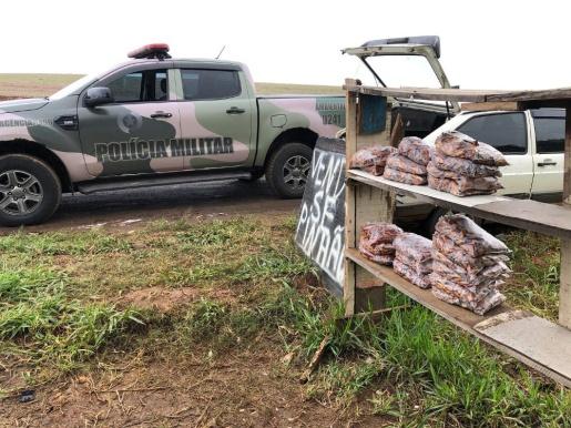 Polícia Ambiental apreende mais de 60 kg de pinhão
