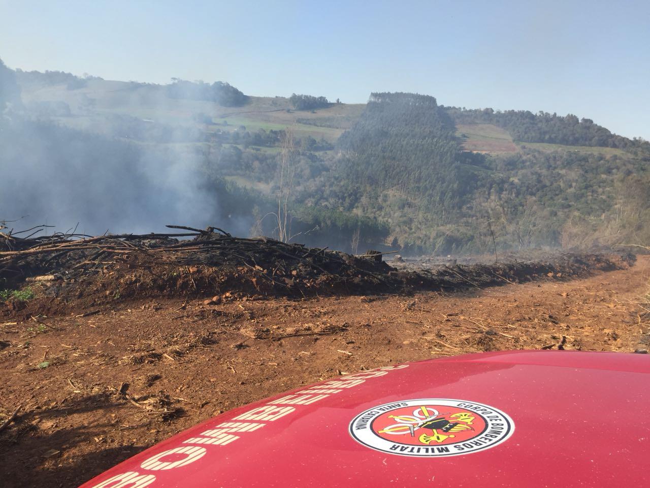 Cerca de dez bombeiros combatem fogo em área de reflorestamento
