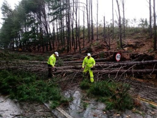 VÍDEO: Governo de SC atua para minimizar danos de ciclone extratropical