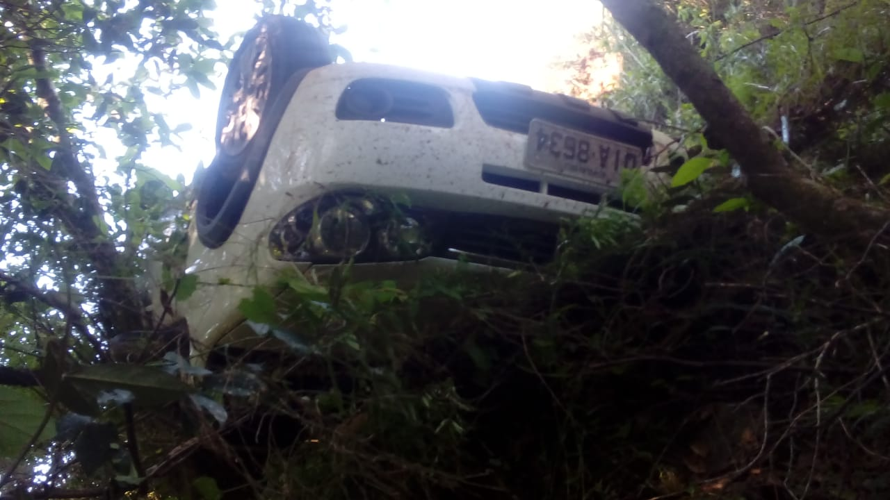 Motorista tenta desviar de cachorro e capota veículo