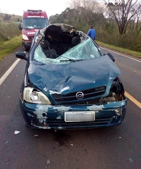 Motorista fica ferido após atropelar um bovino na BR-163