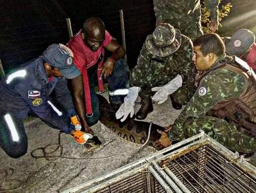 Bombeiros resgatam sucuri de sete metros e 110 kg