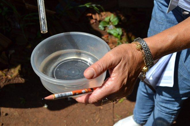 São Miguel do Oeste está sem registrar focos de dengue há mais de um mês
