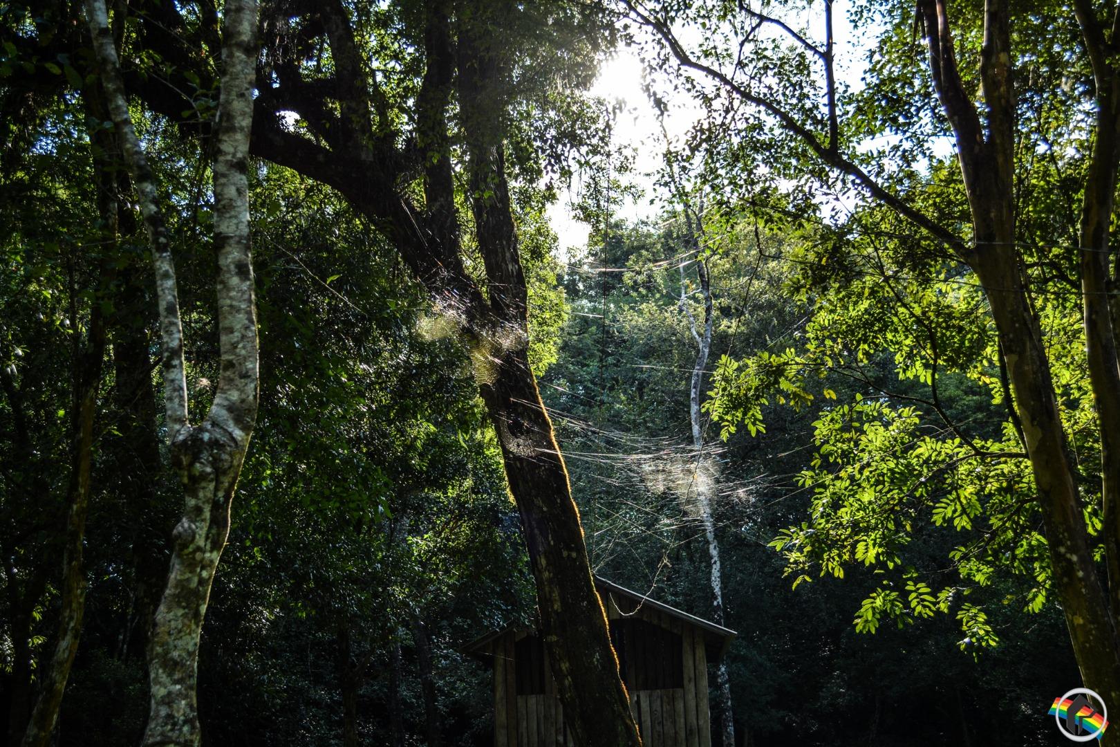 VÍDEO: Camping Maziero continua atendendo normalmente