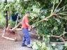 Temporal causa estragos em diversos pontos de SMOeste e municípios vizinhos