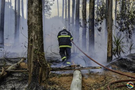Bombeiros orientam população na prevenção de queimadas e incêndios