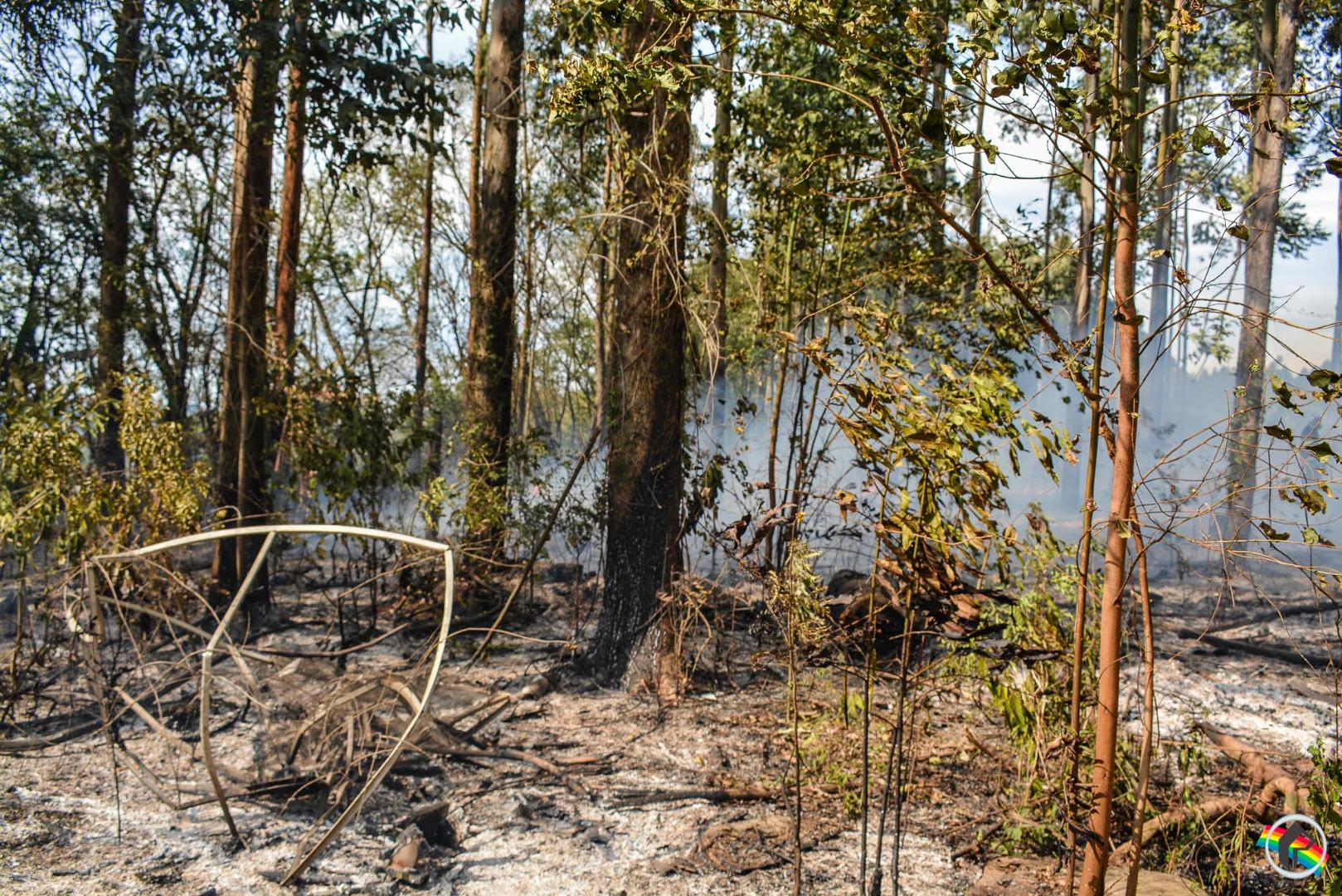 Incêndio florestal mobiliza bombeiros em São Miguel do Oeste