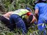 Vídeo: Trabalhador fica ferido ao ser atingido por árvore no interior de Bandeirante
