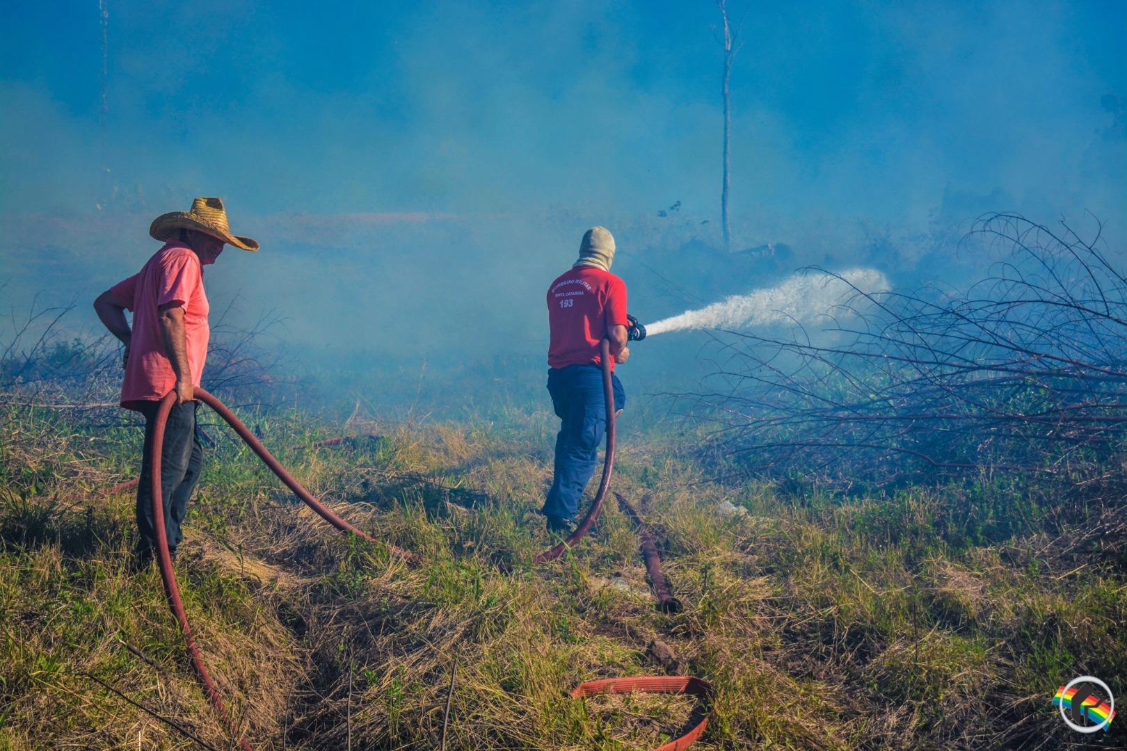 Bombeiros controlam fogo em reflorestamento no município