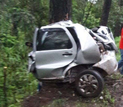 Mulher morre ao colidir carro contra árvore na BR-282