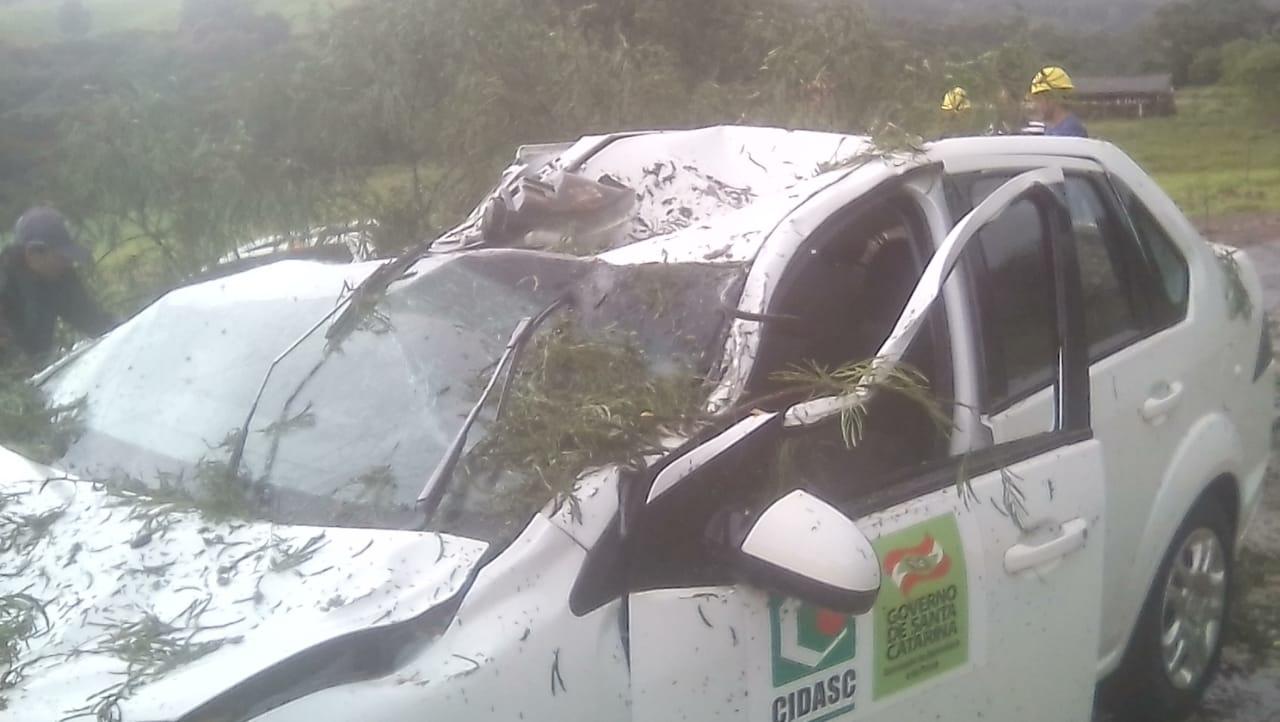 Árvore cai sobre veículo da Cidasc e deixa homem gravemente ferido