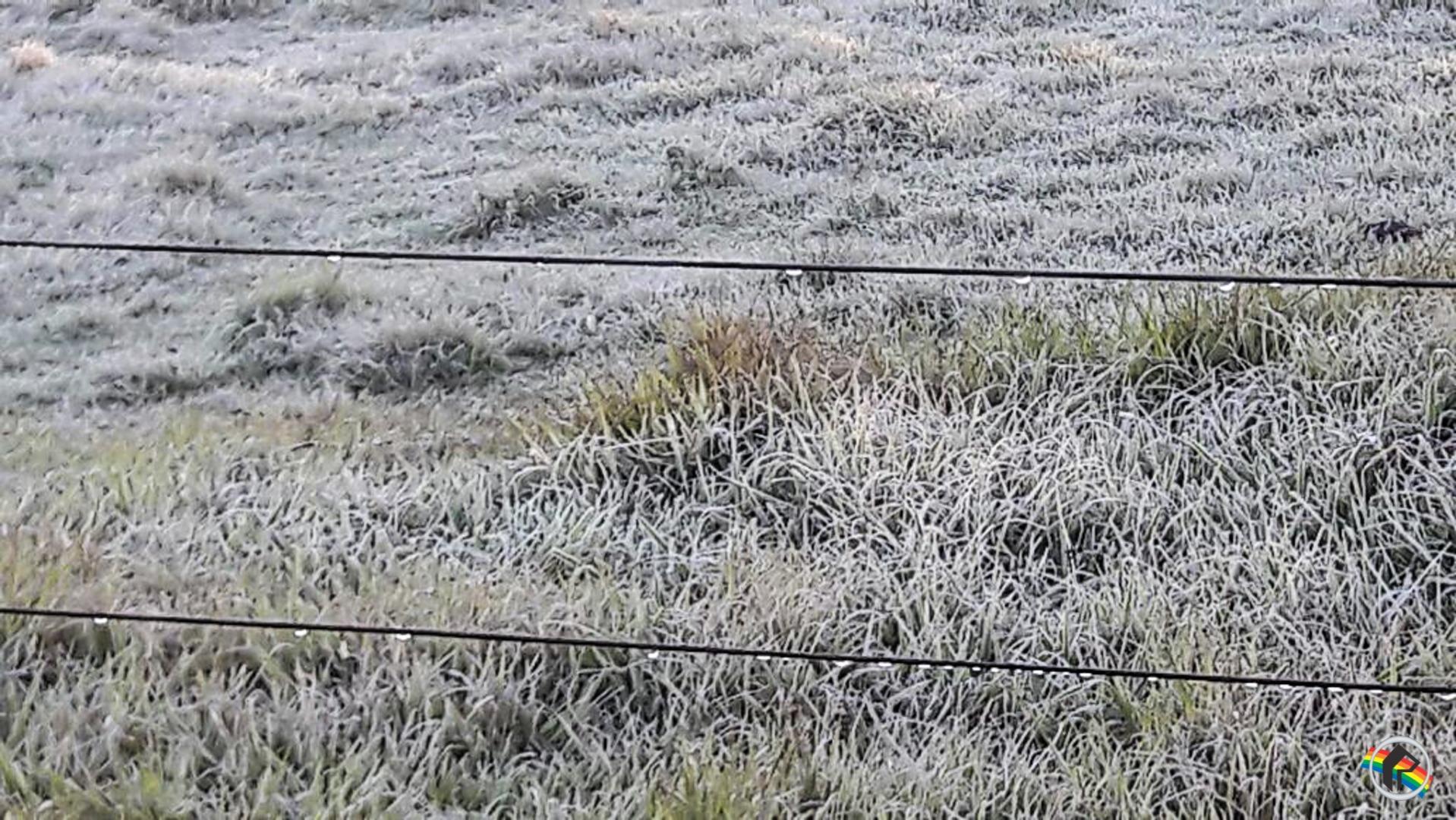 Internautas registram geada durante o amanhecer na região