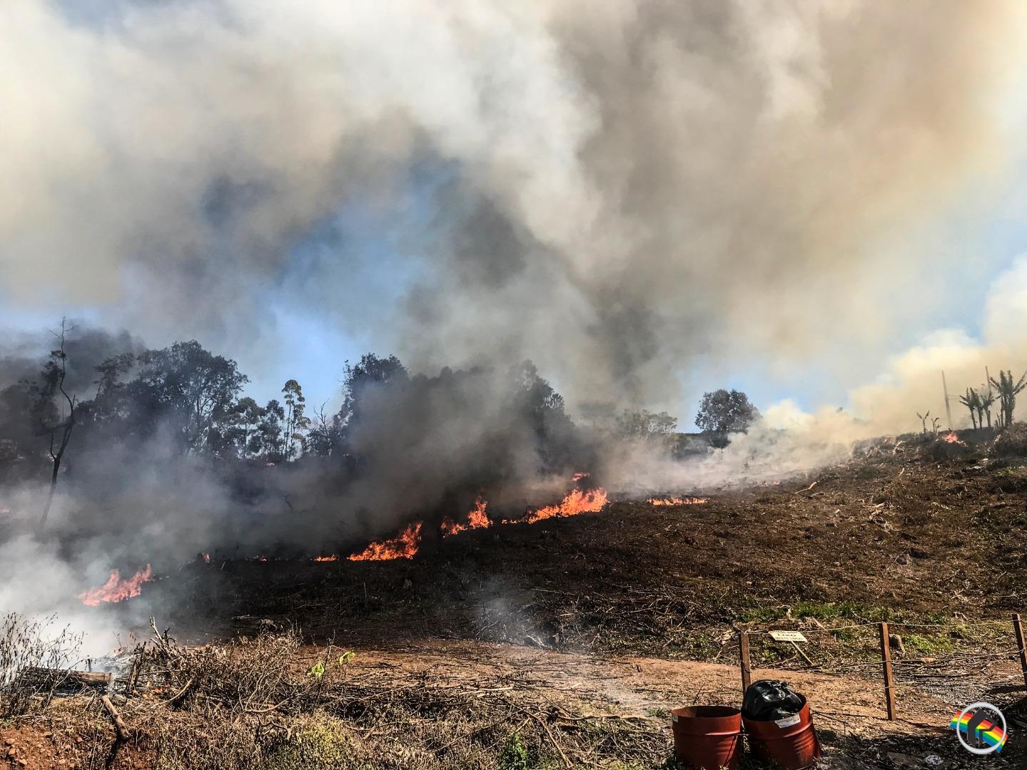 VÍDEO: Incêndio de grandes proporções atinge vegetação no bairro Andreatta