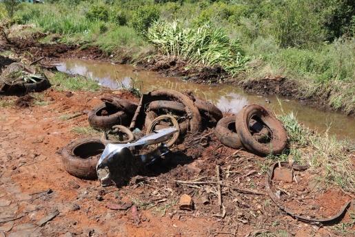 Área de preservação é limpada em Palma Sola
