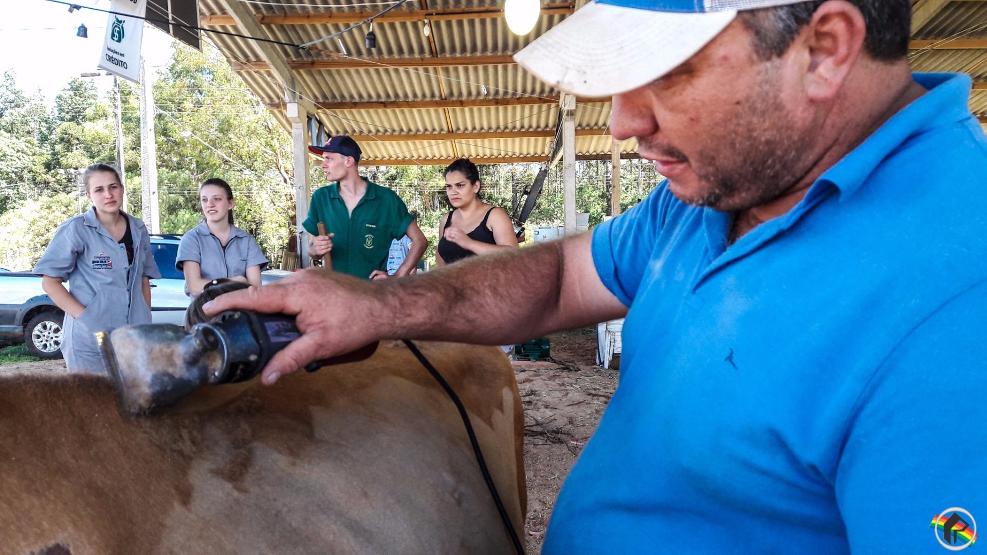 FAISMO: 20 anos deixando os animais mais bonitos para feiras da região