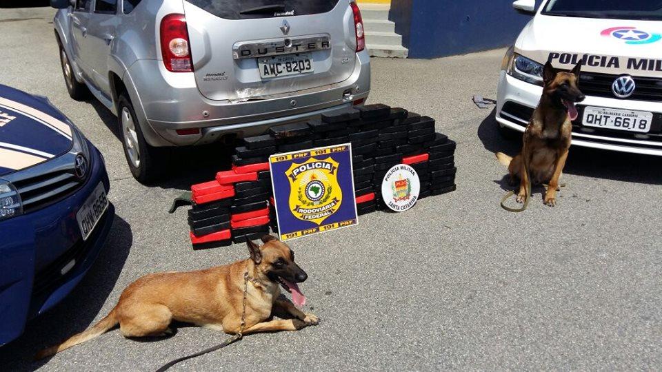 Policial de MS é preso com 104,5 kg de crack em Santa Catarina