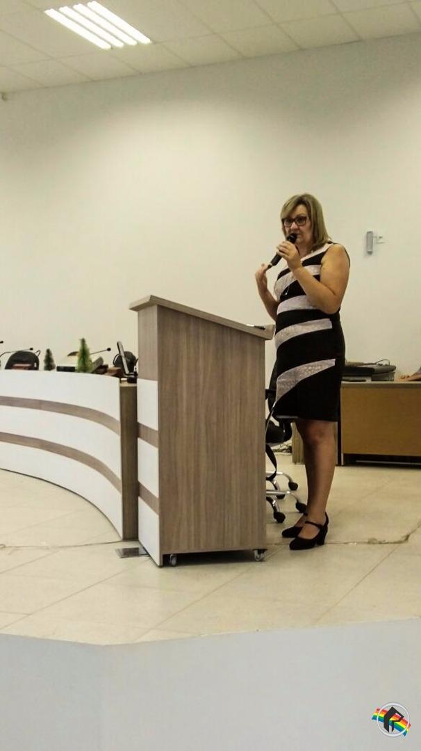 Seminário de Combate à Violência Contra a Mulher lota o legislativo