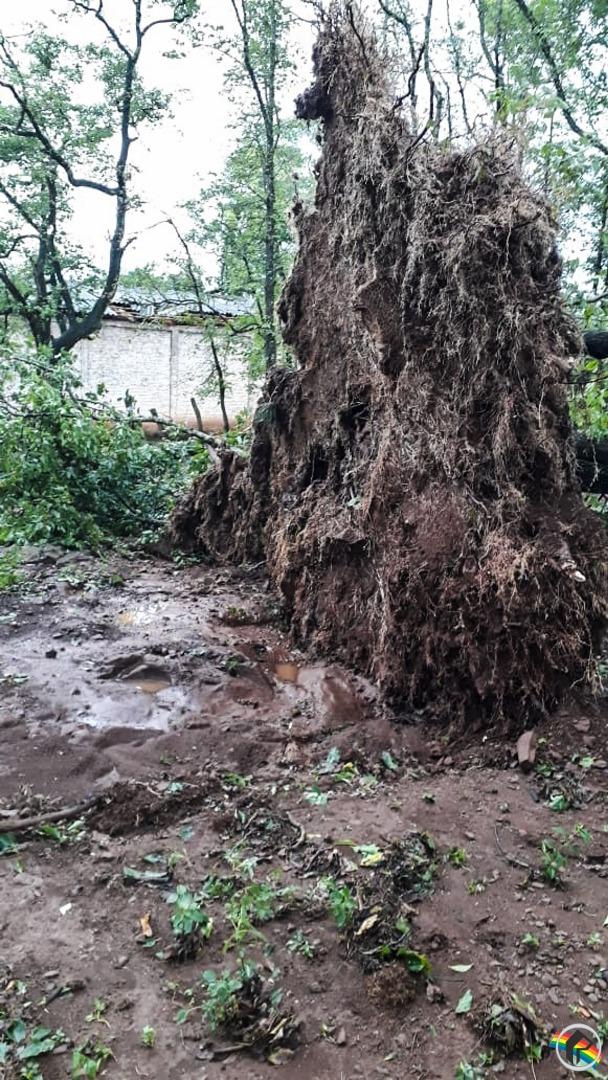 Morador relata princípio de tornado no interior de Guaraciaba