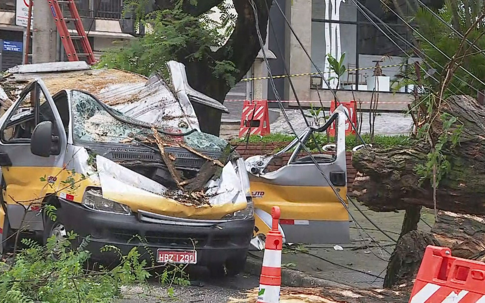 Motorista de van atingida por árvore grita para retirar crianças antes de morrer