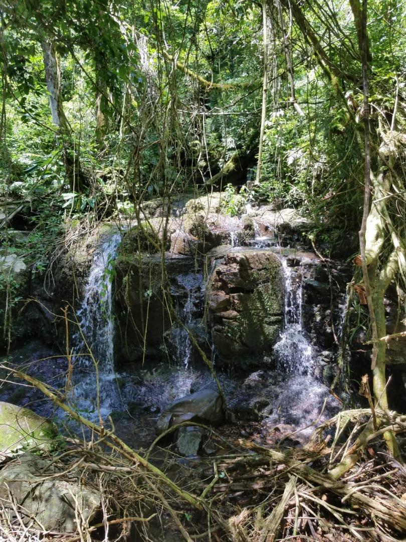 VÍDEO: Primeira trilha ecológica será no próximo sábado em Barra Bonita