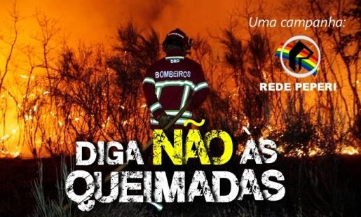 OUÇA: Peperi lança campanha de conscientização sobre as queimadas