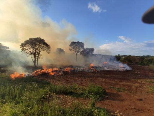 Incêndio atinge área de descarte de galhos no interior de Cunha Porã