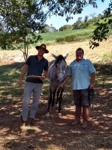Grupo de criadores de Cavalo Campeiro realizam encontro em Tunápolis
